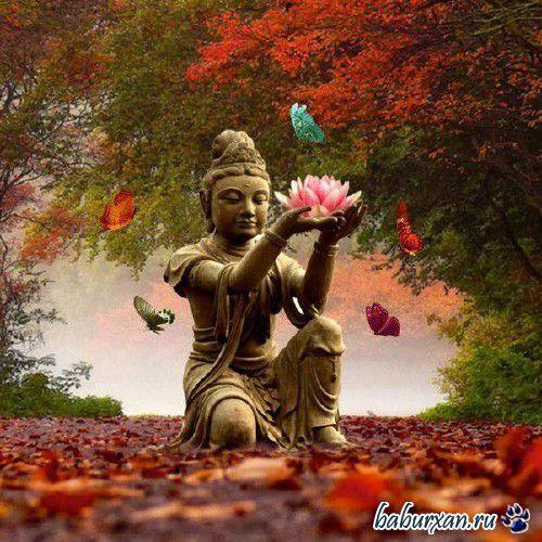 Бханте Хенепола Гунаратана - Восемь внимательных шагов к счастью. Следуя по стопам Будды (Аудиокнига)